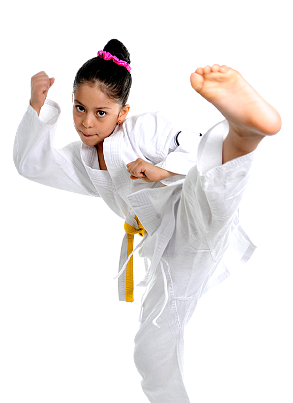 http://mtrymca.org/sites/mtrymca.org/assets/images/programs/karate.png